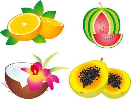 coconut drink: fruits Illustration