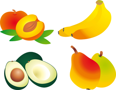 Fruits vector  Vector