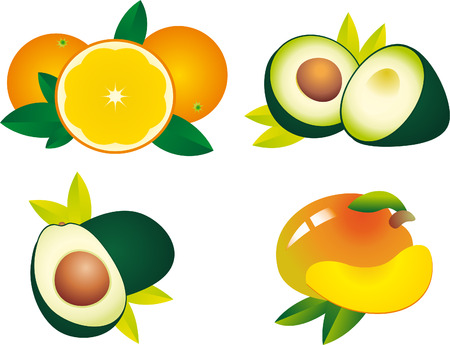 exoticism: Fruits vector