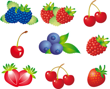 antioxidant: Berry Illustration