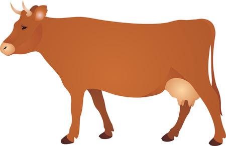 lacteos: Vaca vwctor