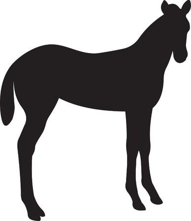 Horse   Stock Vector - 7735780