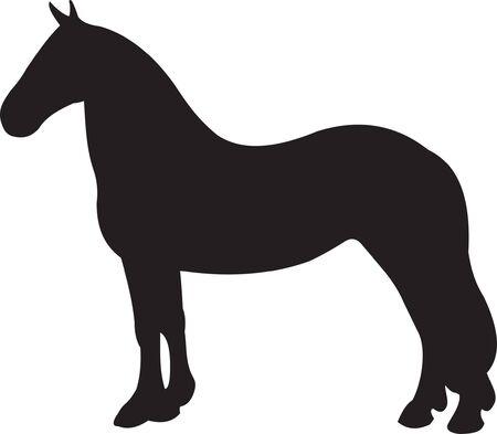 Horse Stock Vector - 7740614
