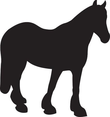 Horse   Stock Vector - 7735782