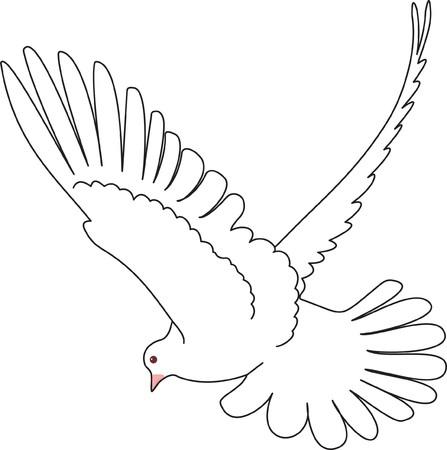 Bird   Stock Vector - 7740706