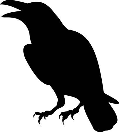 raven: Raven