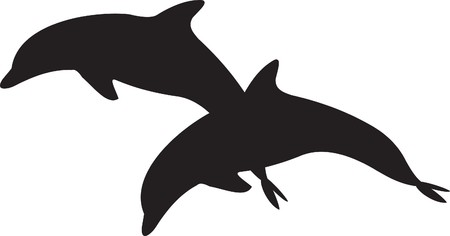 aquatic animal: fish