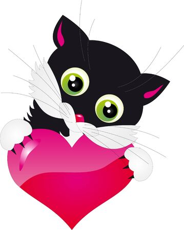 Cat vector Stock Photo - 8923517