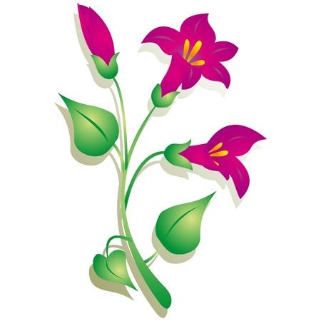 bluebells: Flower vector