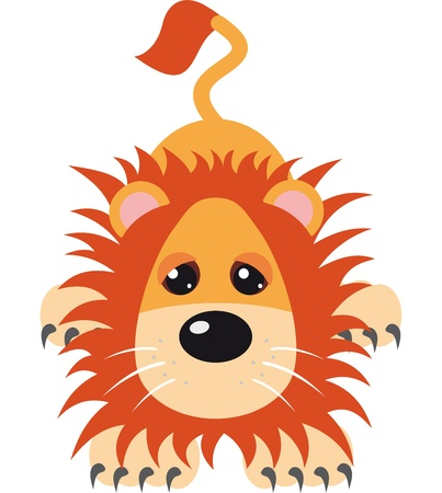 preening: Lion Vector Illustration Illustration