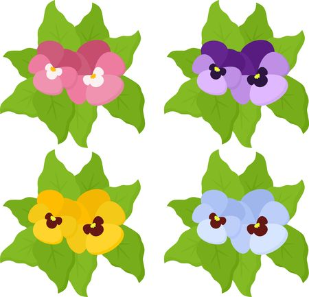 Pansy flowers or spring garden viola tricolor collection isolated on white background. Top view. Vector illustration