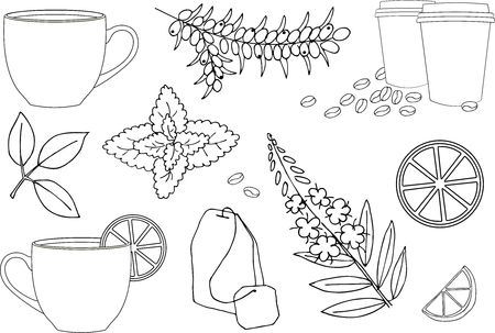 Cup of hot tea or cup of herbal tea. Various herbal tea ingredients collection over white background. Vector illustration set.