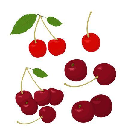 Raccolta di ciliegie. Ciliegia e allegri isolati su sfondo bianco. Illustrazione vettoriale