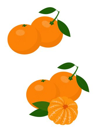 Mandarines, tangerine, clementine with leaves isolated on white background. Citrus fruit. Raster Illustration