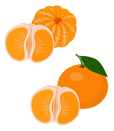 Mandarines, tangerine, clementine with leaves isolated on white background. Citrus fruit. Funny cartoon character. Raster Illustration
