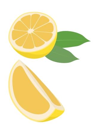 Lemon fruit with leaf vector illustration isolated on white background. Citrus fruit. The half fruit and cut into pieces. Ilustração