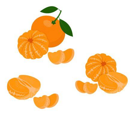 Mandarine, mandarine, clémentine avec des feuilles isolées sur fond blanc. Agrumes. Illustration raster