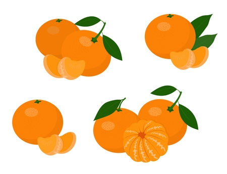 Mandarines, tangerine, clementine with leaves isolated on white background. Citrus fruit. Raster Illustration set Stock Photo