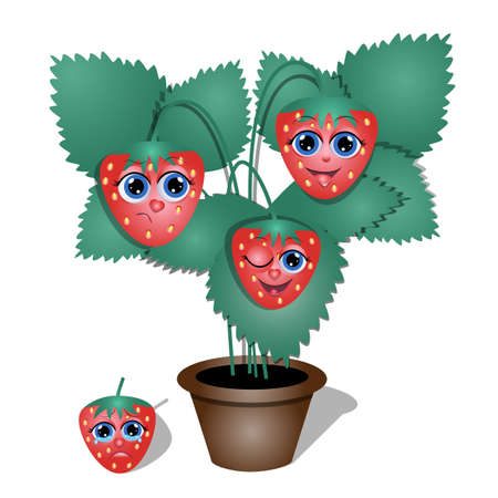 illustration of cartoon strawberry character