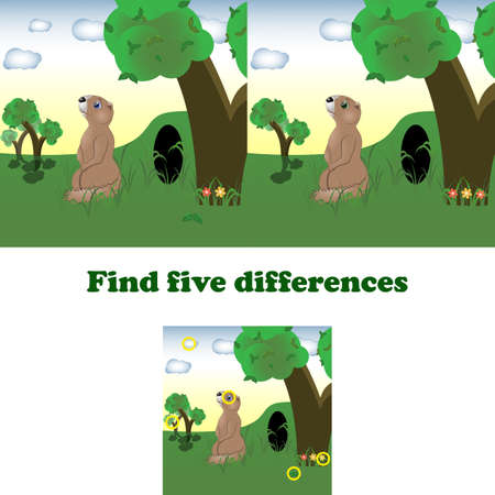 vector illustration find five differences for children