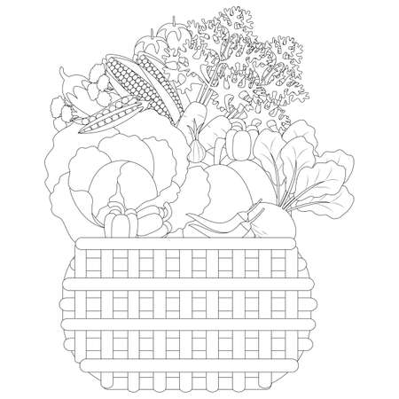 vector illustration of Doodle vegetables in a basket, anti-stress coloring book  イラスト・ベクター素材