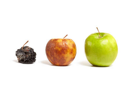 A large juicy green apple next to a small yellow rotting apple next to the little dead withered apple Stock Photo