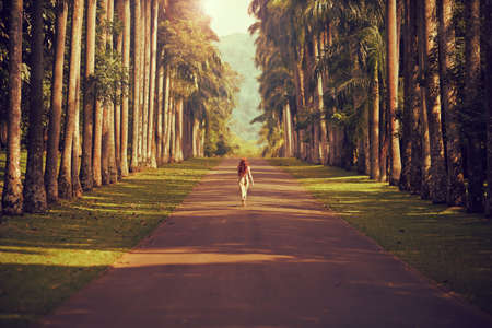 The girl walking down the road surrounded by palm trees to the mountains far away Banque d'images