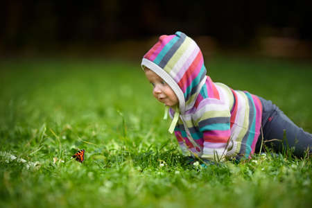 animal eye: Curious baby in striped dress crawling on a green lawn to the butterfly. The child first saw a butterfly and looks very surprised