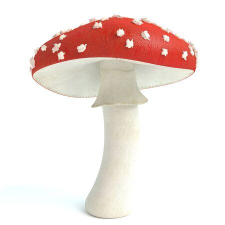 3d illustration of an amanita mushroom