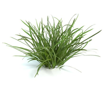 3d illustration of grass Imagens