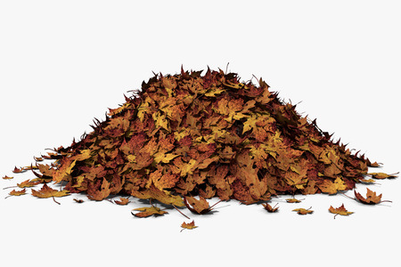 autumn leafs: 3d illustration of a pile of leaves