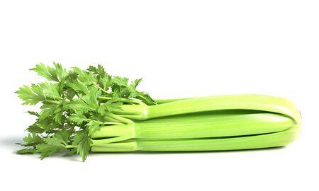 3d illustration of celery