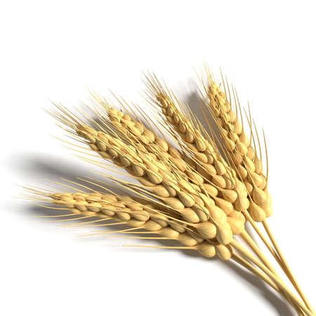 3d illustration of wheat Imagens
