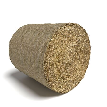hay bale: 3d illustration of a hay bale