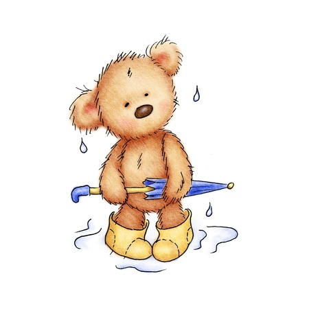teddy bear with umbrella and rubber boots