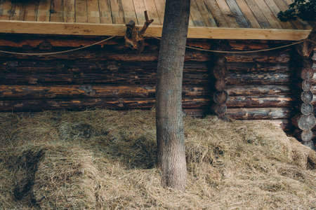 Wall of old traditional wooden log house and hayloft