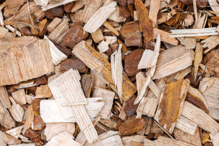 Textured background of scattered big wood chips of different shapes and colors Reklamní fotografie