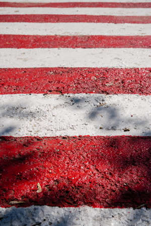 Vertical shot of fresh new red and white stripes, signal lines. Striped pedestrian crosswalk with black shadows from trees Stok Fotoğraf