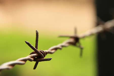 razorwire: A close-up picture of some razor-wire on an old military farm in South-Africa