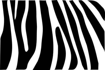 Vector - zebra texture Black and White Vector