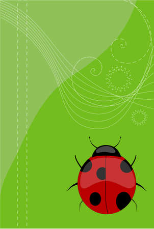 spring bed: Ladybird, vector, Illustration, background Illustration