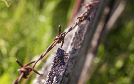 barbed wire fence: barbed wire on an old wooden fence Stock Photo
