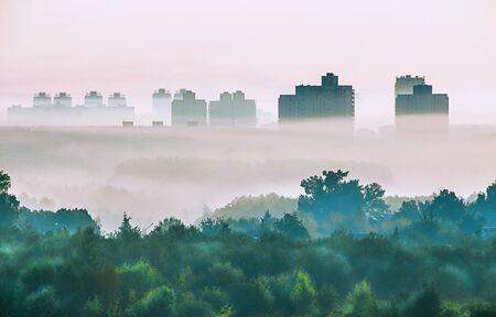 Bright beautiful dawn, light passes through the fog. Фото со стока