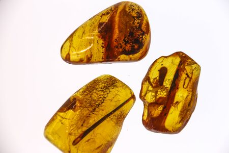 Fragments of amber close-up. Natural amber with pieces of antiquities inside