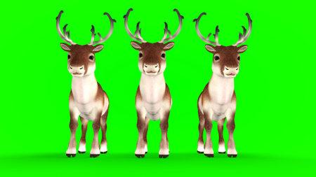 Christmas deer on green Фото со стока