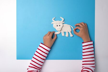 ox or bull modelling clay or salty dough craft concept for kid and kindergarten, year of the ox, how to make bull, step by step instruction, tutorial, DIY, step3, barnyard animal, kids hand Фото со стока - 149533086