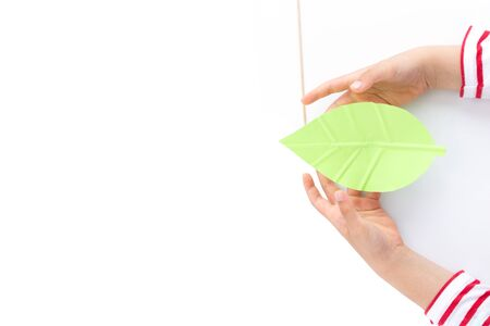 kids hands push strips on a green leaf shape paper detail, simple paper craft for kid and kindergarten, step by step instruction, tutorial, DIY, snail project, step4, stick Фото со стока - 150025177