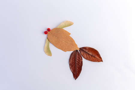 easy fish craft from leaf for kids, autumn creative idea