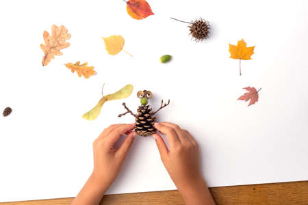 pine cone autumn craft for kids, ideas how to prepear nature craft