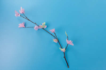 simple tree branch with paper flowers, step by step instruction, DIY, spring or easter craft activity for kids Фото со стока